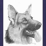 Dog german shepard Aprons