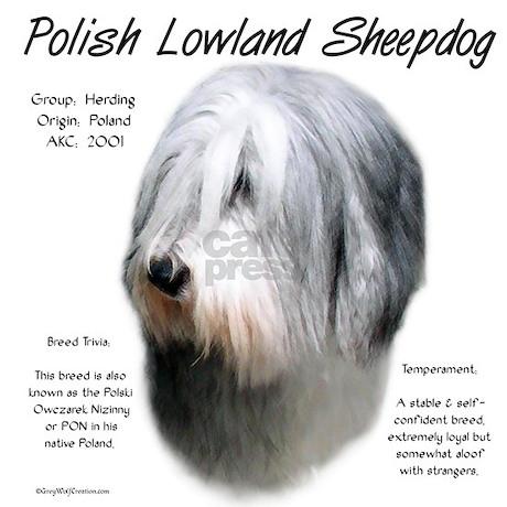 Polish Lowland Sheepdog Rectangle Decal By Denofthedog