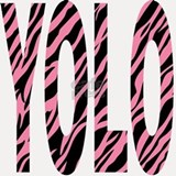 YOLO pink zebra stripes Shot Glass