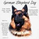 German sheperd Sweatshirts & Hoodies