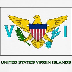 The United States Virgin Islands Flag Stuff Kids T