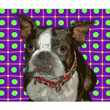 Boston terrier t-shirts T-shirts