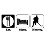 Eat sleep hockey Wall Decals