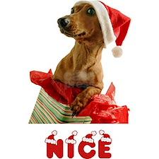 Nice Dachshund Christmas Cards