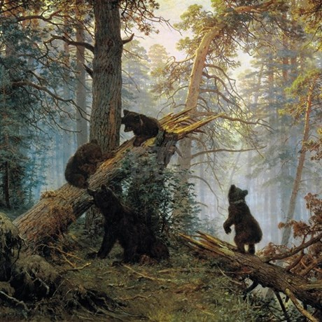 Ivan shishkin morning in a pine forest shower curt color white