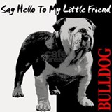 Cute Hello bulldog Shot Glass