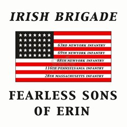 IRISH BRIGADE Ash Grey T-Shirt