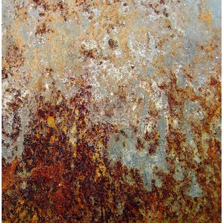 rust shower curtain by thehomeshop