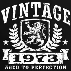 Vintage 1973 Tee
