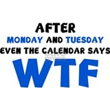 After monday, tuesday even the calendar says wtf T-shirts
