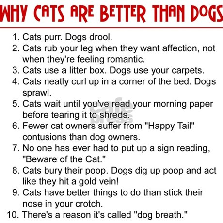 Essay About Dogs Vs Cats