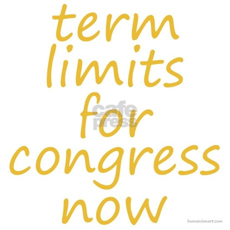 twenty eighth amendment congressional term limits essay This is an essay about the congressional compensation by congress as the twenty-seventh amendment the term in which they sat instead, congress.