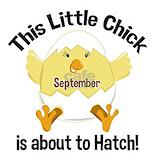 Maternity hatch september Maternity