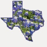 Texas Bluebonnets Shot Glass