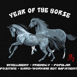 Year of The Horse Characteristics T