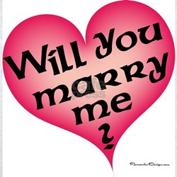 Will You Marry Me  Ash Grey T-Shirt