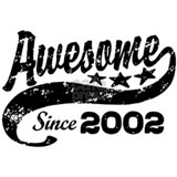 Awesome Since 2002 Mug