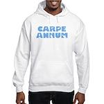 Carpe Annum Hooded Sweatshirt