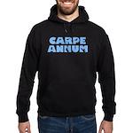 Carpe Annum Hoodie (dark)
