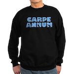 Carpe Annum Sweatshirt (dark)