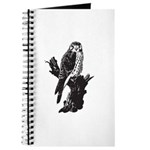 American Kestrel Sketch Journal