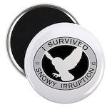 Snowy Owl Irruption Magnet