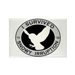 Snowy Owl Irruption Rectangle Magnet