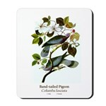 Band-tailed Pigeon Mousepad