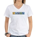 Elements of Falconry Women's V-Neck T-Shirt