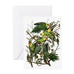 Audubon's Carolina Parakeet Greeting Card