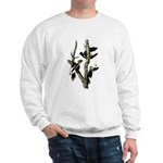 Ivory-billed Woodpecker Sweatshirt