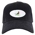 Fuertes' Meadowlark Black Cap