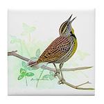Fuertes' Meadowlark Tile Coaster