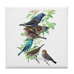 Grosbeaks & Buntings Tile Coaster