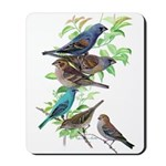 Grosbeaks & Buntings Mousepad