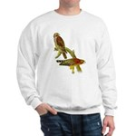 Red-shouldered Hawk Sweatshirt