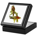 Red-shouldered Hawk Keepsake Box