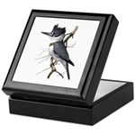 Fuertes' Kingfisher Keepsake Box