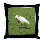 Eurasian Spoonbill Throw Pillow