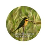 Little Bee-eater 3.5