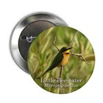 Little Bee-eater 2.25